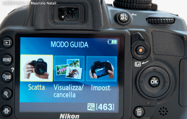 NikonD3100-007-(1)