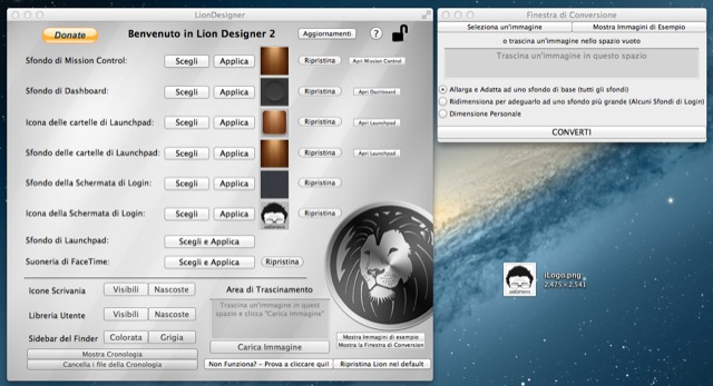 lion-designer