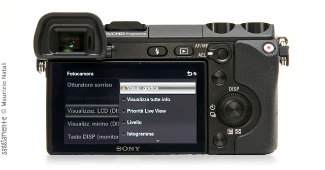 sony-nex-7-display-info