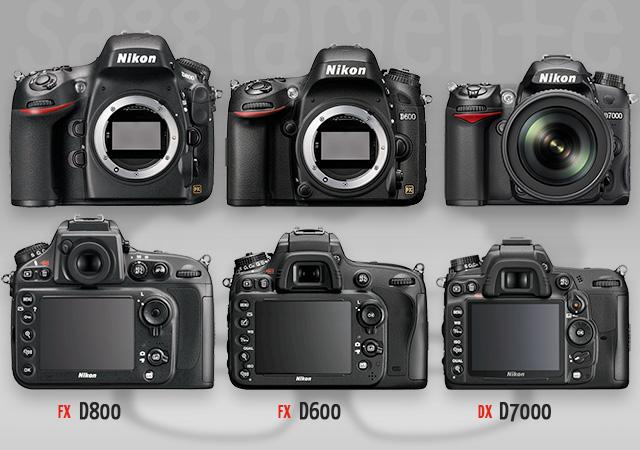 nikon-d800-vs-d600-vs-d7000