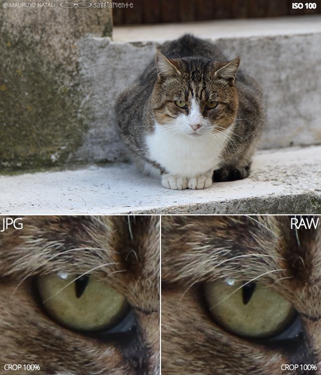 7dmkii-raw-jpg