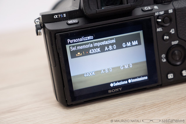a7s2-display-wb