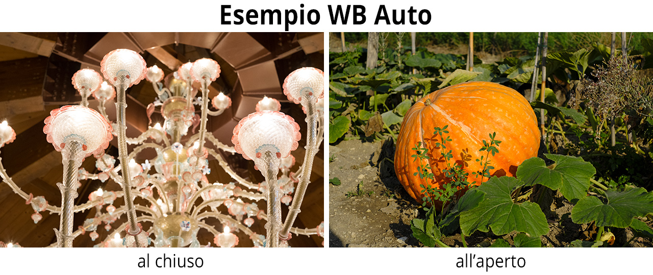 xpro2-esempio-wb