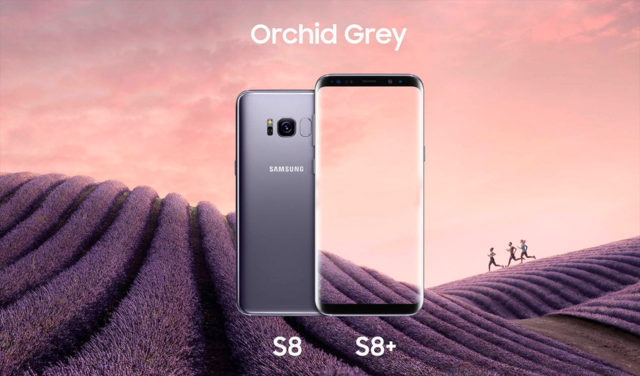 s8-orchid-grey